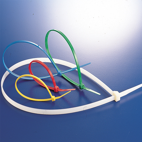 Plastic Nylon Cable Tie Mould